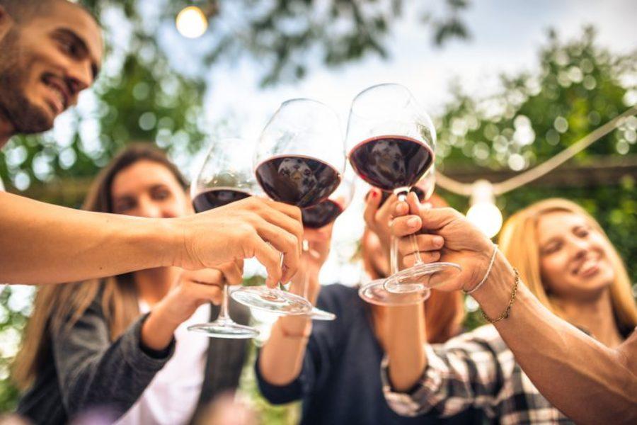 Wine tours & Visite alle cantine di Morro d'Alba